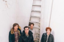 parquet courts, sunbathing animal