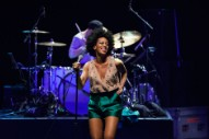 Jay Z Attacked by Solange, Video Reportedly Shows