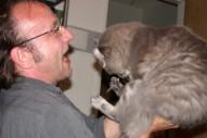 Q&A: David Yow on Cats
