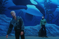 The Drums Swoon With the Fishes in 'I Can't Pretend' Video