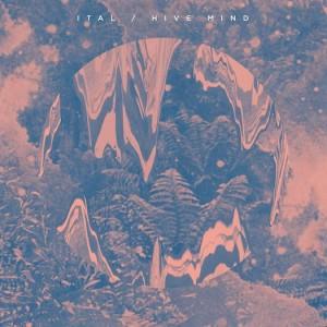 Ital, 'Hive Mind' (Planet Mu)