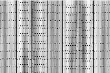 Tetras, 'Pareidolia' (Flingco)