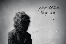 Yellow Ostrich, 'Strange Land' (Barsuk Records)