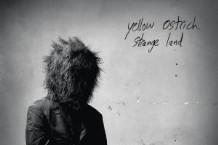 Yellow Ostrich, 'Strange Land' (Barsuk Records)