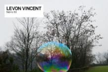 Levon Vincent, 'Fabric 63′ (Fabric)