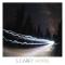 S. Carey, 'Hoyas' (Jagjaguwar)