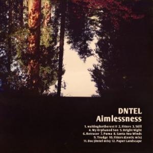 Dntel, 'Aimlessness' (Pampa)