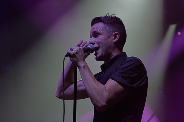 Brandon Flowers / Photo by Wyatt Bosworth