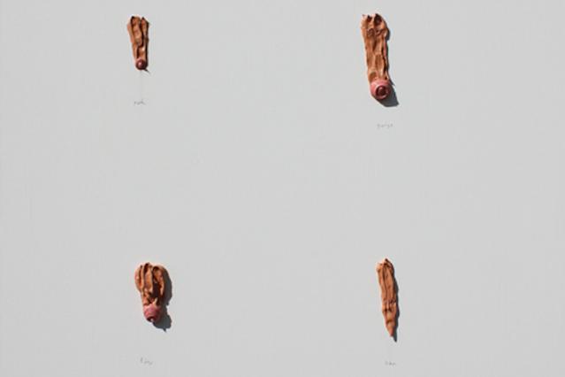 Photos of penises