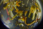 See PAWS' Fisheye-Lensed 'Sore Tummy' Video