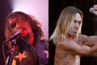 The Darkness, Iggy and the Stooges Both Plotting (New) 'Old-School' Albums