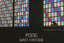 pond, giant tortoise, hobo rocket