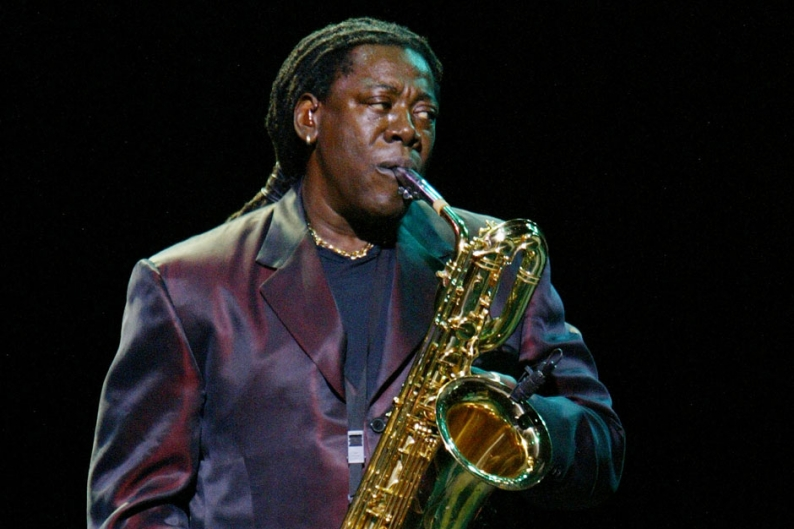 Clarence Clemons - I Wanna Be Your Hero