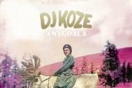 DJ Koze, 'Amygdala' (Pampa)