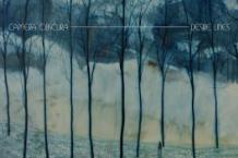 Camera Obscura, 'Desire Lines'