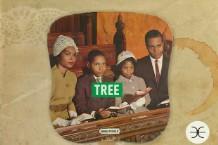 130515-tree