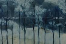 Camera Obscura, 'Desire Lines' (4AD)