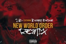 danny brown SD new world order remix life of a savage mixtape