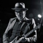 The Roots Make a New Man of Elvis Costello at One-Off 'Wise Up Ghost' Brooklyn Show