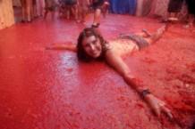 electric tomato festival, nassau coliseum