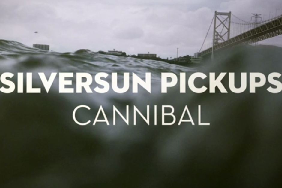 silversun pickups, cannibal, the singles collection