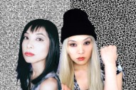 Cibo Matto Announce Breakup