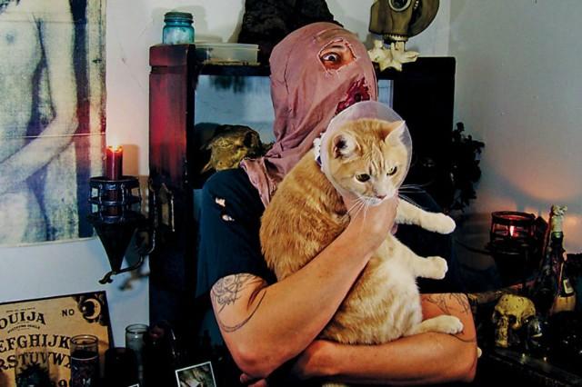 Metal Cats Book Photos