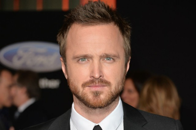 Coachella Celebrities Paid Aaron Paul Lea Michele Vanessa Hudgens