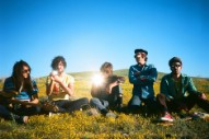 The Growlers Clean Up for Spit-Shined New Album 'Chinese Fountain'