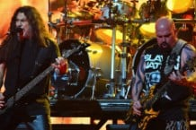 Slayer Saved Homeless Kitten Indianapolis Kerry King