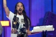 Steve Aoki Will No Longer Throw Cakes at Festivalgoers