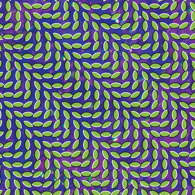 animal collective, pavilion, review