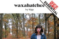 Review: Waxahatchee Brings the Pain (And '90s Alt-Rock) on 'Ivy Tripp'