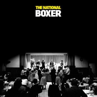 142 - Boxer