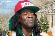 Flavor Flav Was Arrested in Vegas for a DUI and Drug Possession