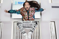 Steve Aoki Sued By Concertgoer After Ill-Fated Stage Jump