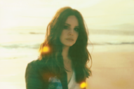 Lana Del Rey Is the Subject of James Franco's New Book