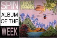 Review: Palehound Ties Indie Rock in Knots on 'Dry Food'