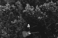 Review: Chelsea Wolfe Plumbs New Depths on 'Abyss'