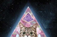 Lil BUB (Yes, the Internet Cat) Is Dropping an Album