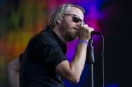 The National Detail Grateful Dead Charity Compilation Featuring Stephen Malkmus, J Mascis, More
