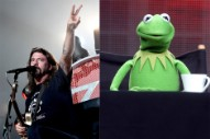 Dave Grohl Will Appear in an Upcoming Episode of 'The Muppets'