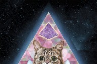 Lil Bub Just Dropped a Pitch-Pawfect Single Called 'New Gravity'