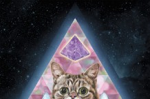 lil-bub-new-gravity