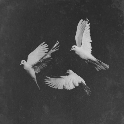 pusha-t-untouchable