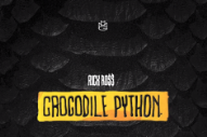 Rick Ross Worries About Drones on New 'Crocodile Python' Single