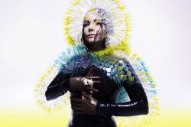 Björk Explains How She Wrote 'Stonemilker' on 'Song Exploder' Podcast