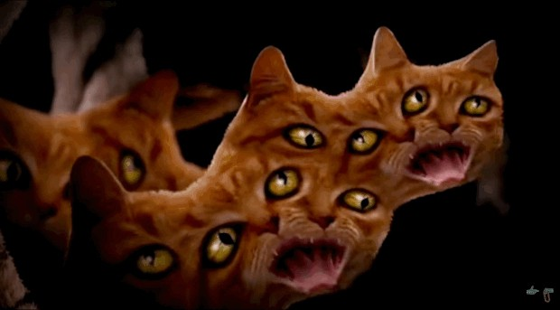 demon cat run the jewels meowpurrdy