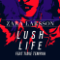 lush-life-zara-larsson-remix-tinie-tempah