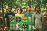 Pinegrove: Getting By With a Little Help From Their Friends